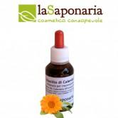 la_saponaria_oleolito_di_calendula