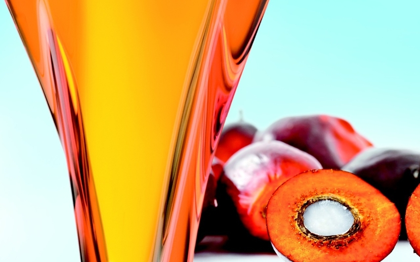 Prodotti senza olio di Palma: ecco perché preferirli!
